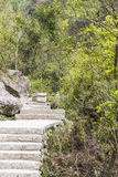De stappen van de steen Stock Afbeelding