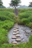 De stappen van de steen over een rivier Stock Foto's
