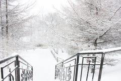De stappen van het park in de winter Stock Afbeelding