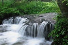 De stappen van de kalksteenrots leiden tot een waterval Stock Foto