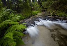 De stappen van de kalksteenrots leiden tot een waterval Royalty-vrije Stock Afbeeldingen