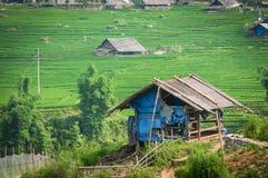 De stapterras van de rijst in Vietnam Royalty-vrije Stock Afbeelding
