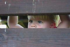 De starende blik Royalty-vrije Stock Afbeeldingen