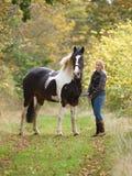 De Status van het meisje en van het Paard royalty-vrije stock afbeeldingen