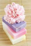 De staven van de zeep met natuurlijke ingrediënten Stock Fotografie