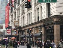 De 43ste Macys-Bloem toont in New York in 2017 Stock Afbeelding