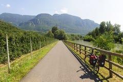 De steeg van de cyclus van de vallei Adige stock afbeeldingen