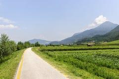 De steeg van de cyclus van de vallei Adige royalty-vrije stock foto's