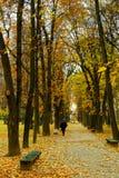 De steeg van de herfst Stock Afbeelding