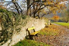 De steeg van de herfst no.3 Royalty-vrije Stock Fotografie