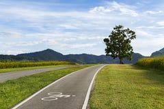 De steeg van de landschapsfiets op een heuvel Stock Afbeeldingen