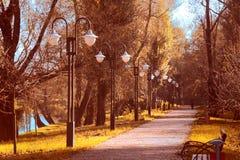 De steeg van het de herfstpark Stock Foto's