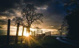 De steeg van het land bij zonsondergang Royalty-vrije Stock Afbeelding