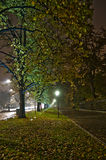 De steeg van het park bij nacht Stock Foto