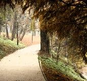 De steeg van het park het schilderen stock illustratie