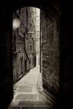 De steegsepia van Edinburgh royalty-vrije stock afbeeldingen