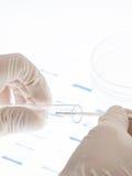 De steekproef van DNA stock foto