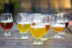 De Steekproeven van het ambachtbier in Glazen in openlucht Royalty-vrije Stock Foto