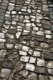 De steen inlayed straat in Lissabon, Portugal. Stock Fotografie