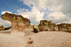 De Steen schiet fenomeen als paddestoelen uit de grond stock foto's