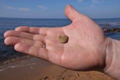 De steen van de hartvorm Royalty-vrije Stock Foto's