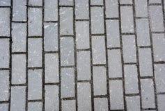De steen van de textuurbestrating Stock Afbeeldingen