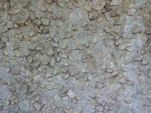 De steen van de textuurmuur Stock Afbeelding