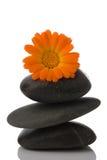De steen van het kuuroord en oranje bloem Royalty-vrije Stock Foto's