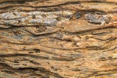 De steen werd houten stock afbeelding