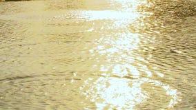 de steen werpt in water, Close-up van steen overslaand spel Steenval in water stock video