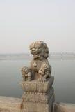 De steenleeuwen van Peking, China op lugoubrug Stock Afbeelding