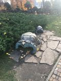 De steenschildpadden kropen om in de zon te zonnebaden Royalty-vrije Stock Afbeelding