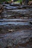 De steenstappen Stock Foto's