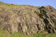 De Steile rotsen van Salisbury, Holyrood Park, Edinburgh royalty-vrije stock foto's