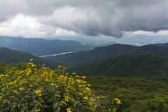 De steile Tuinen overzien, Asheville Noord-Carolina royalty-vrije stock afbeeldingen