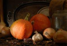 De stemming van de herfst stock fotografie