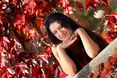 De stemming van de herfst Royalty-vrije Stock Foto