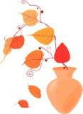 De stemming van de herfst Vele roze en magenta asters Stock Foto