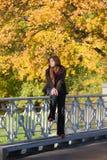 De stemming van de herfst Vele roze en magenta asters stock foto's