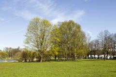 De stemming van de lente Royalty-vrije Stock Foto