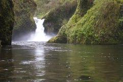 De stempelkom valt van de de Riviervallei van Watervalcolombia het Noordwesten van Oregon Stock Afbeeldingen