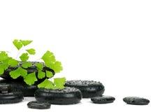 De stenen en de bladeren van Zen royalty-vrije stock fotografie