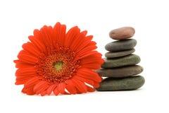 De stenen en de bloem van Zen stock foto
