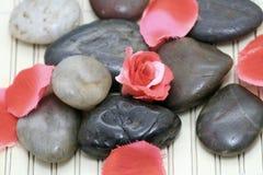 De stenen en de rozen van het kuuroord Stock Fotografie