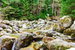 De stenen van de bergrivier Stock Foto's