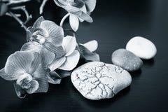 De stenen van de kuuroordmassage en orchideeënbloemen stock fotografie
