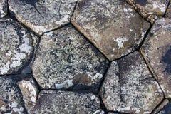 De Stenen van de reuzenverhoogde weg Stock Afbeelding