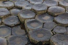 De Stenen van de reuzenverhoogde weg Royalty-vrije Stock Fotografie