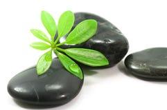 De stenen van de therapie Stock Afbeelding
