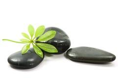 De stenen van de therapie Royalty-vrije Stock Fotografie